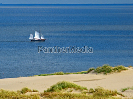 sailer - 291053