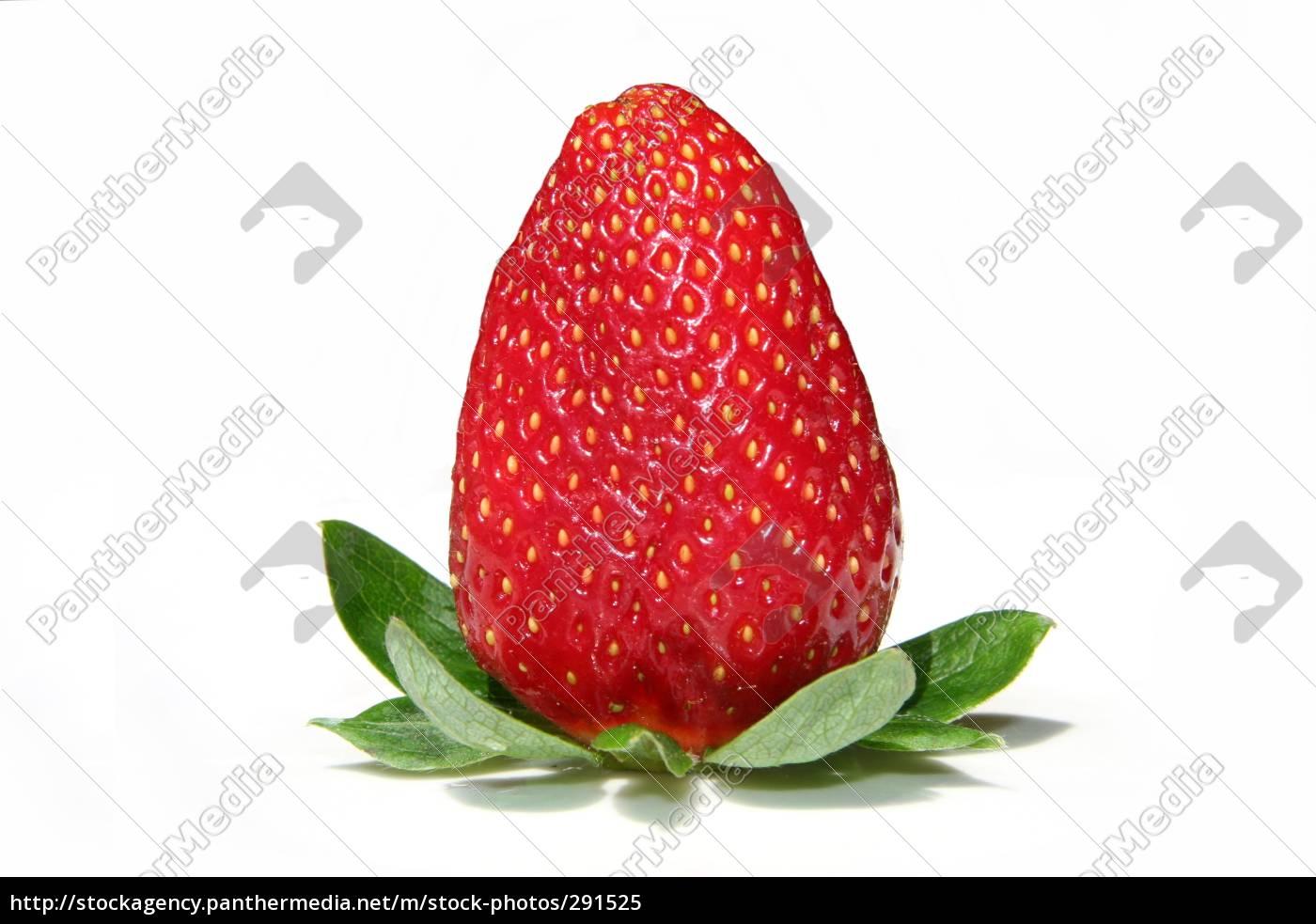 strawberry - 291525