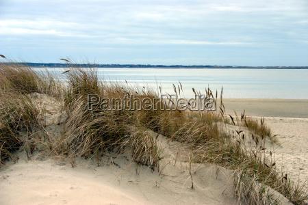 dunes, (2) - 298374