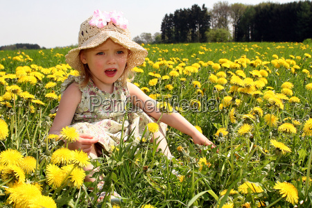 on, the, spring, meadow, ii - 299571