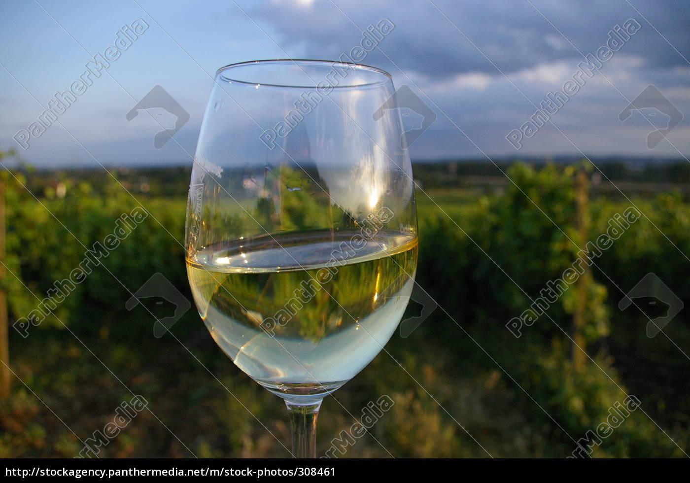 wine, glass - 308461