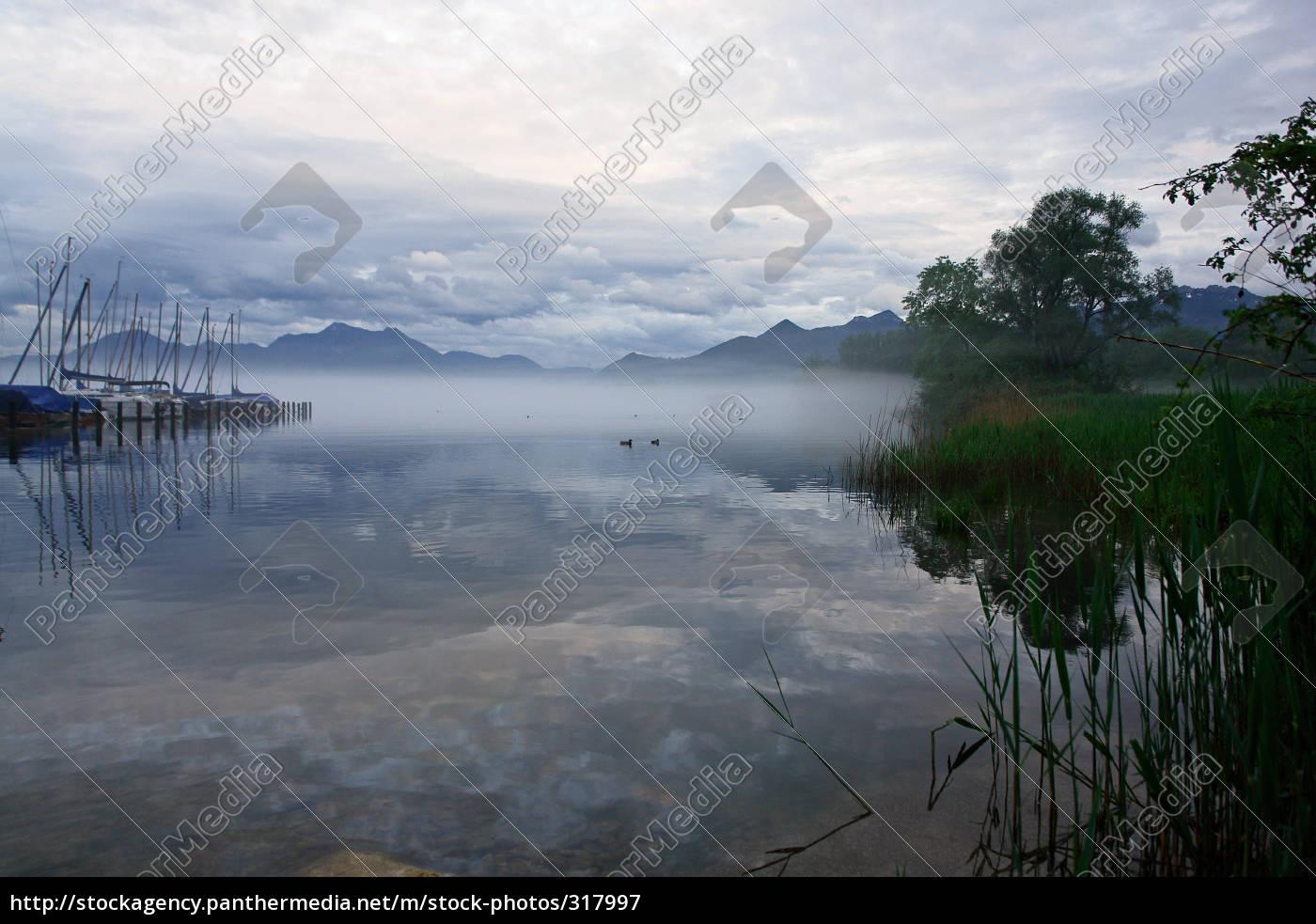 the, fog - 317997