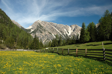 south, tyrol, peace - 320101