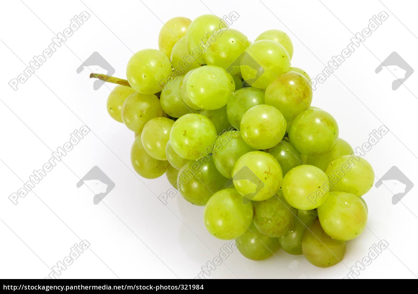 grapes - 321984