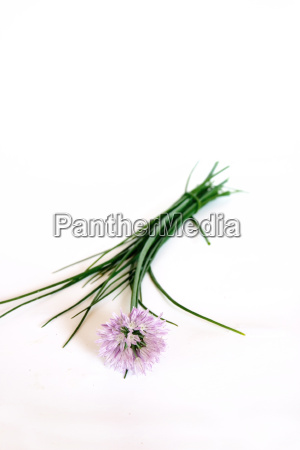 chives, 2 - 322919