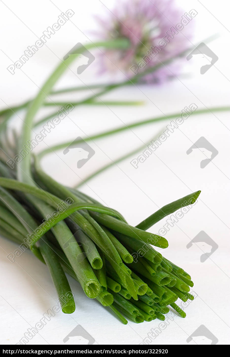 chives, 3 - 322920