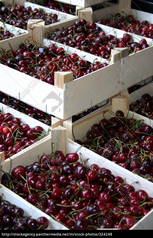 cherries, 2 - 324248