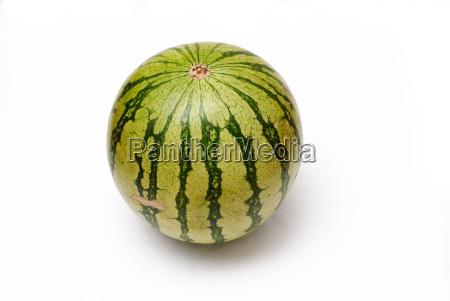 melon - 326966