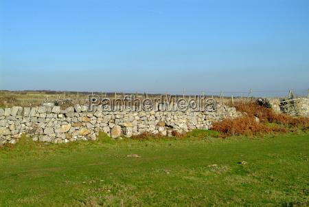 wall 5