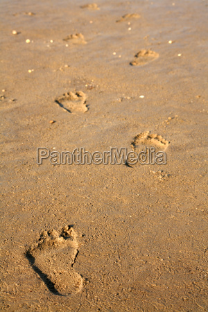footprints - 332391