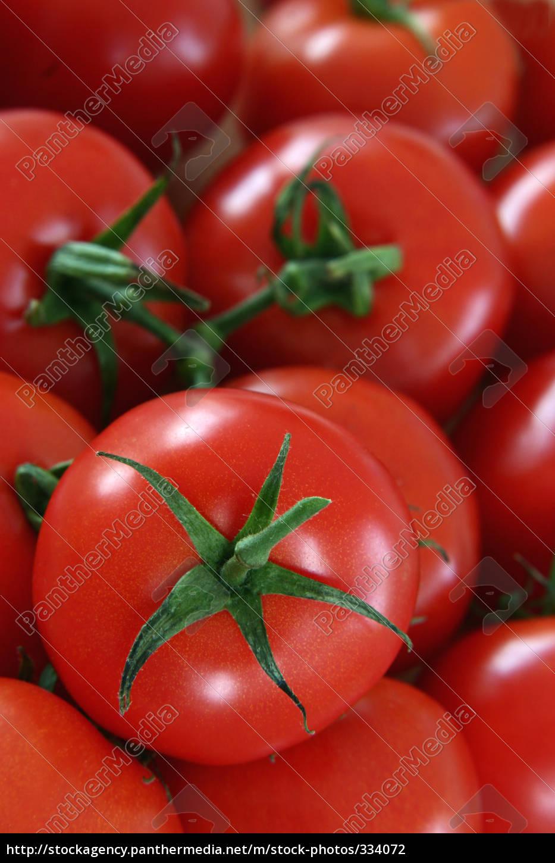tomatoes - 334072