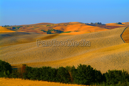 hill landscape tuscany