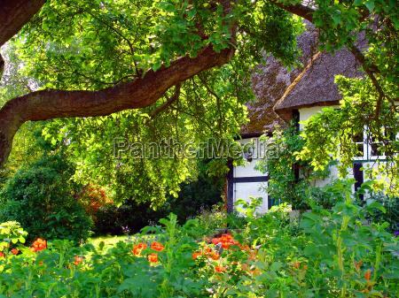 garden in sieseby