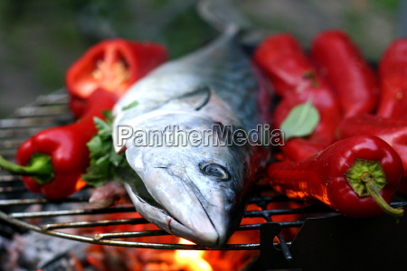 grilled, fish, 2 - 340569