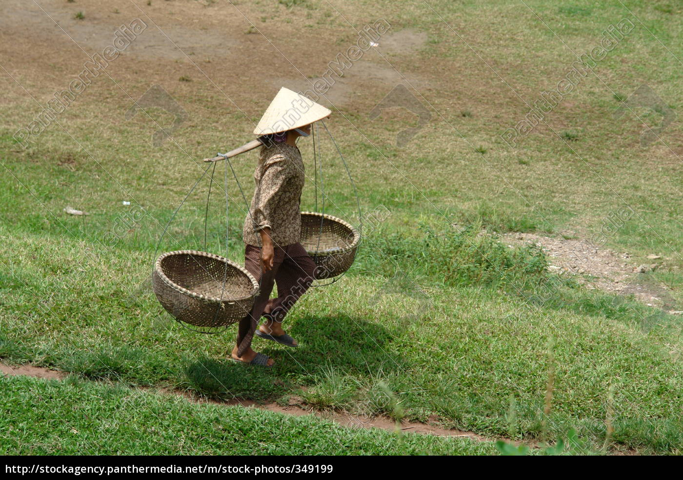 farmer, goes, vietnam - 349199