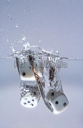 splash-one - 351615