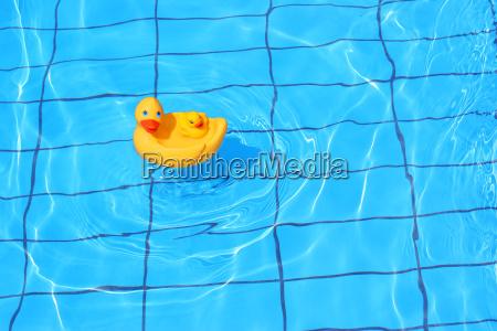 rubber, duck - 357766