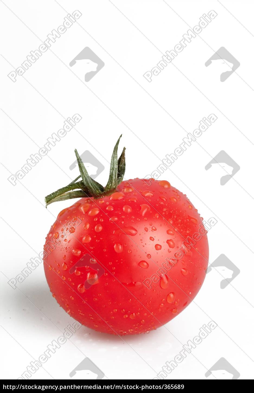 fresh, vegetable - 365689