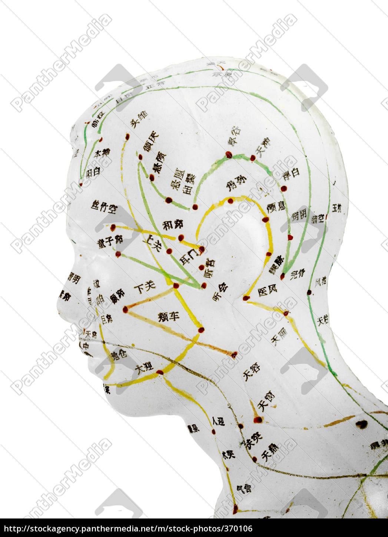 acupuncture - 370106