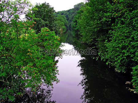 the wupper