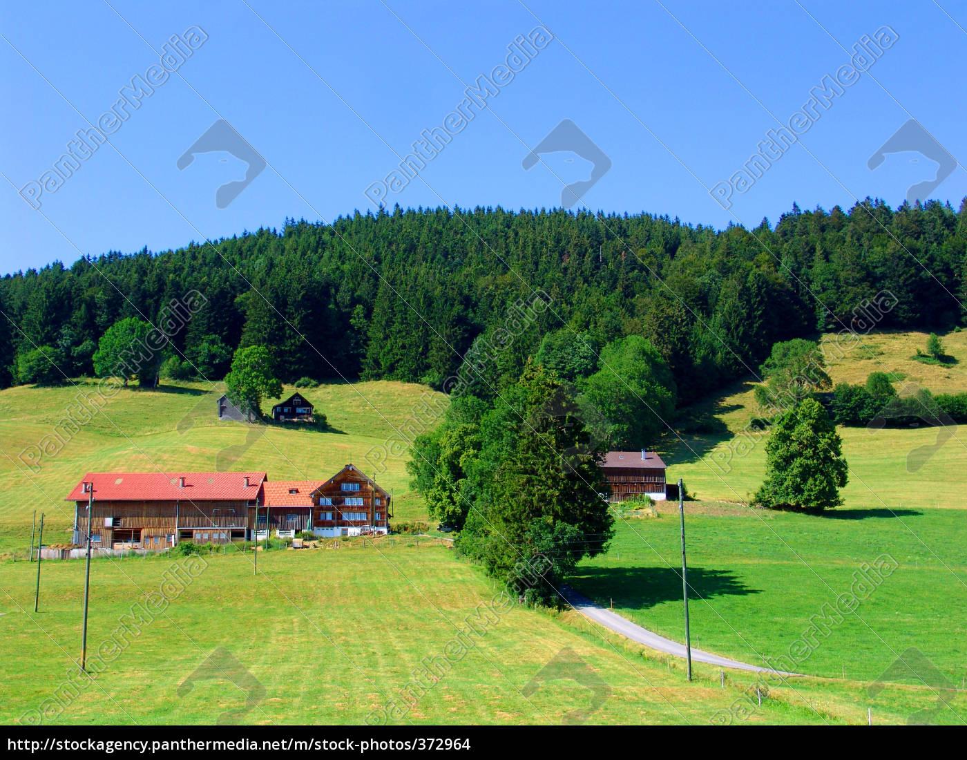 appenzellerland - 372964