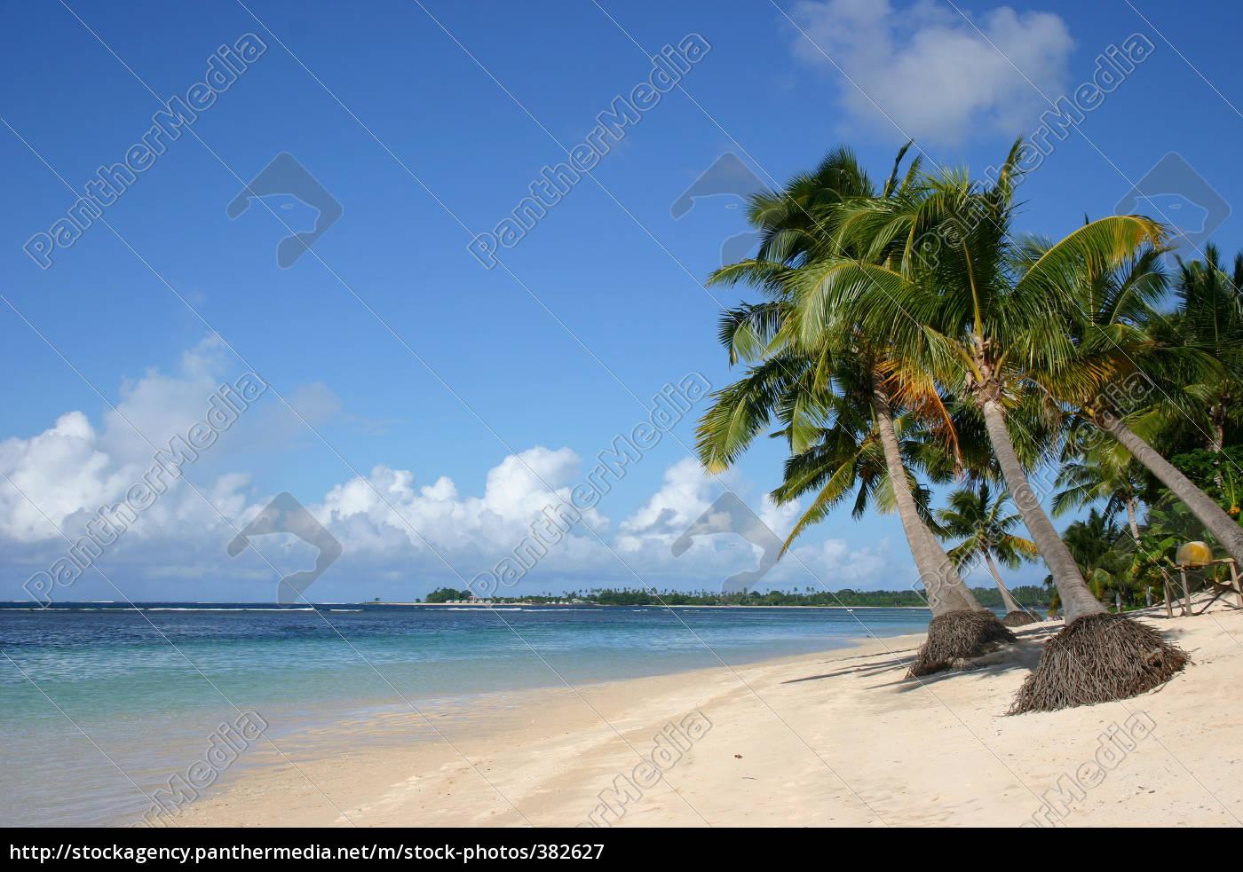 dream, beach - 382627