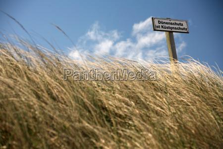 north, sea, dunes - 391937