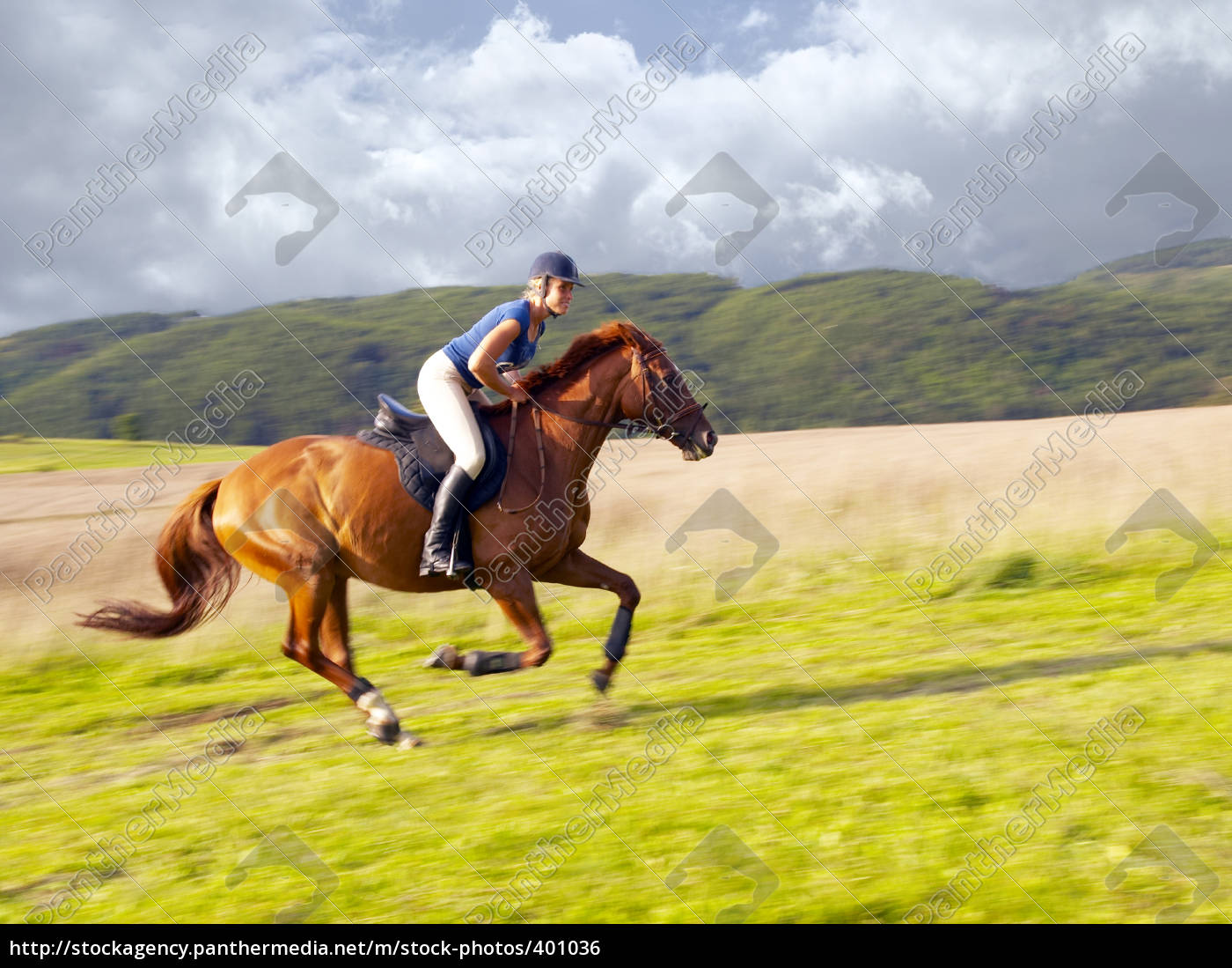 sunday, afternoon, horse, ride - 401036