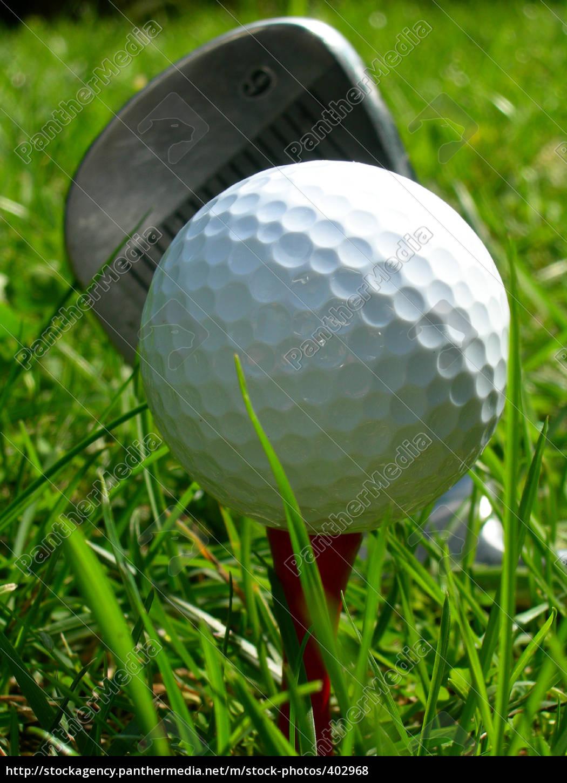 golf - 402968
