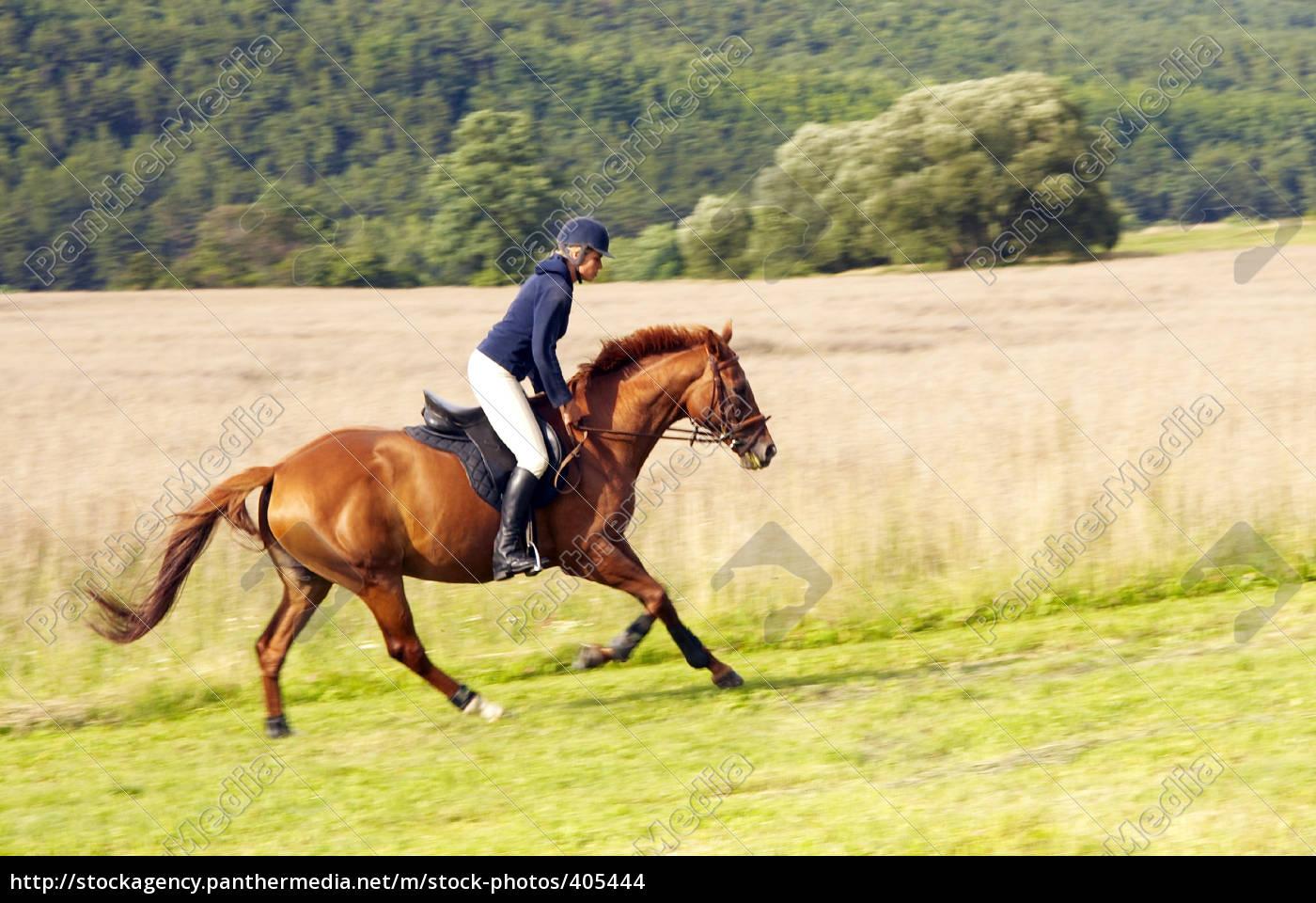 sunday, afternoon, ride, horse, iii - 405444
