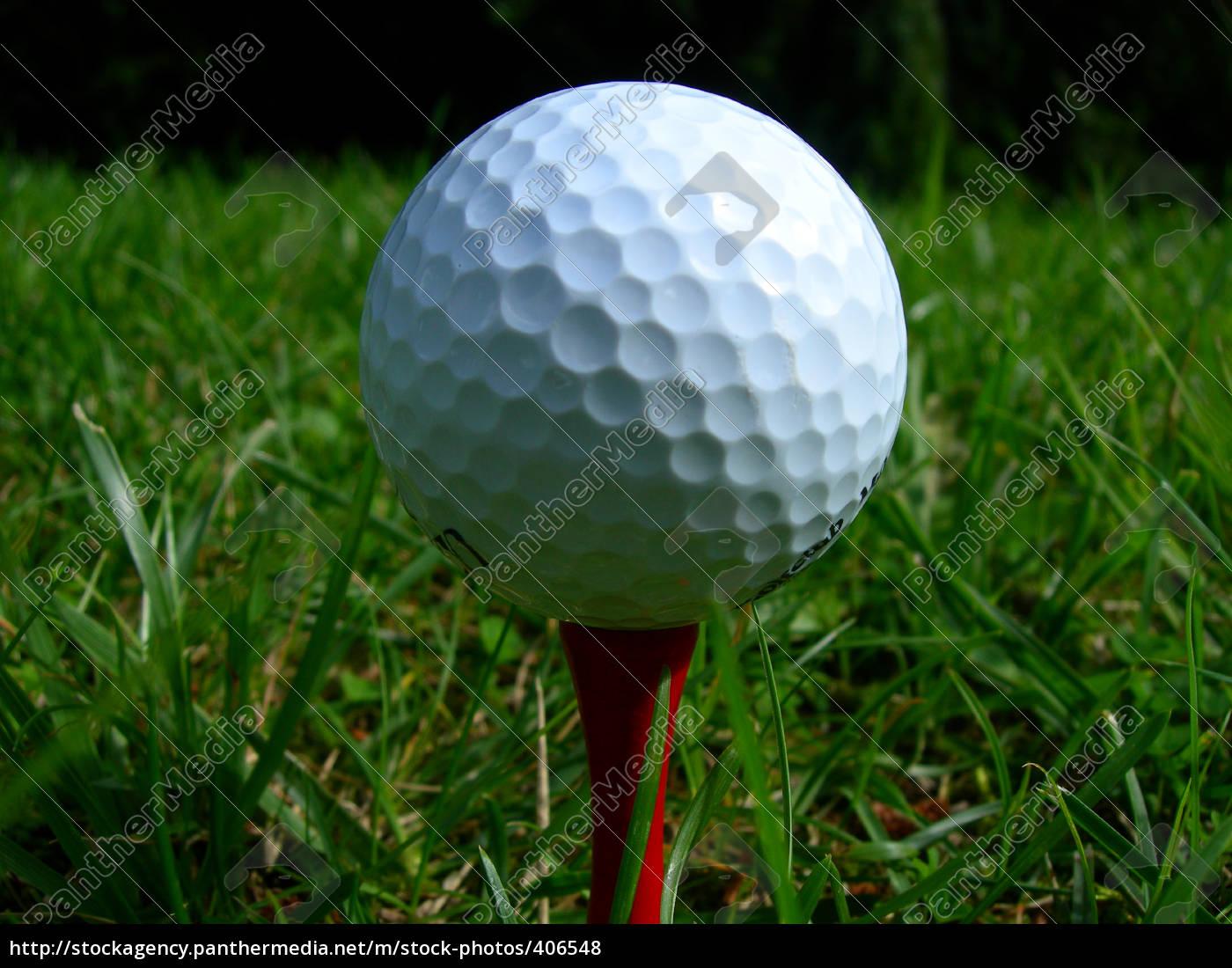 golf - 406548