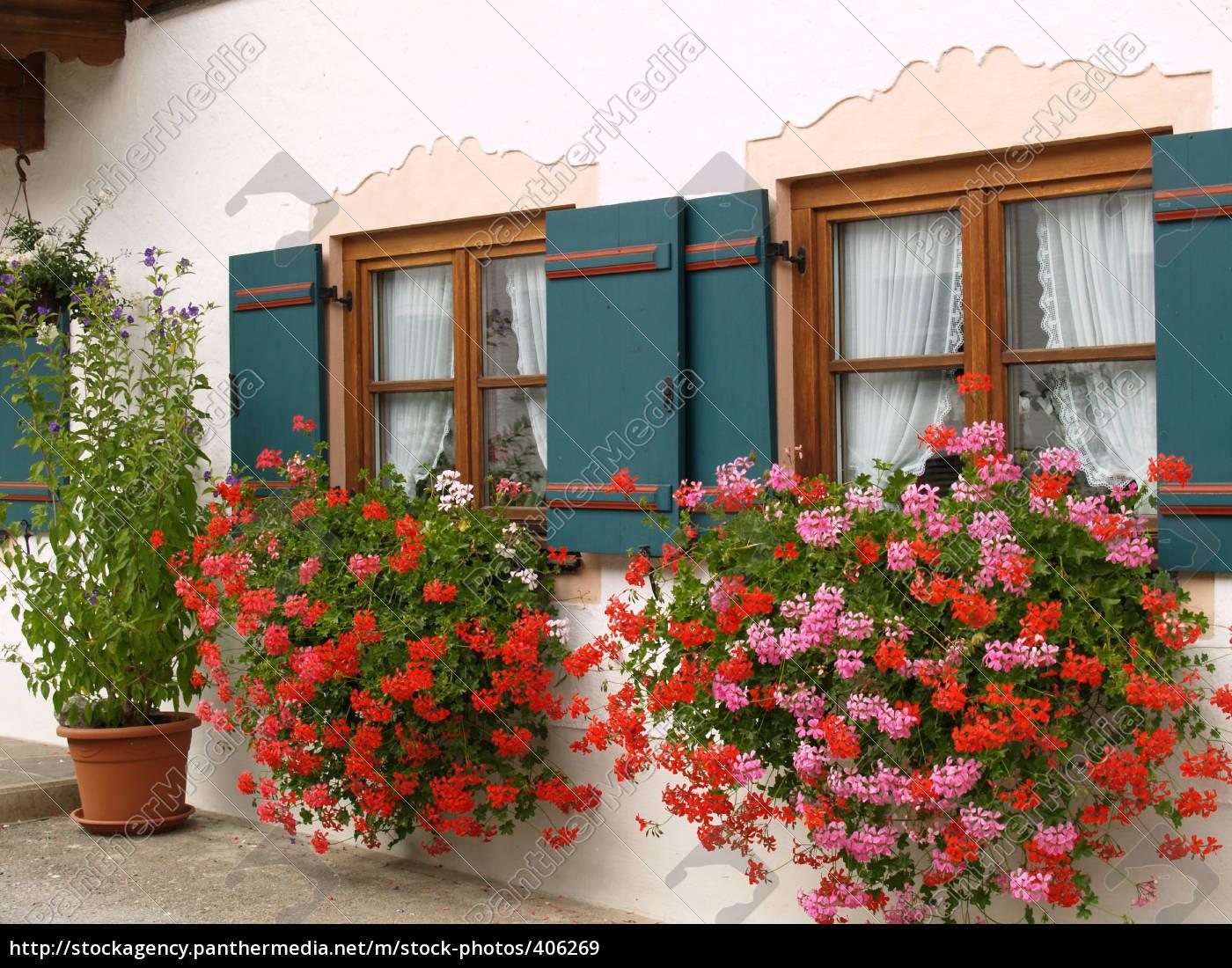 window, with, flowers - 406269