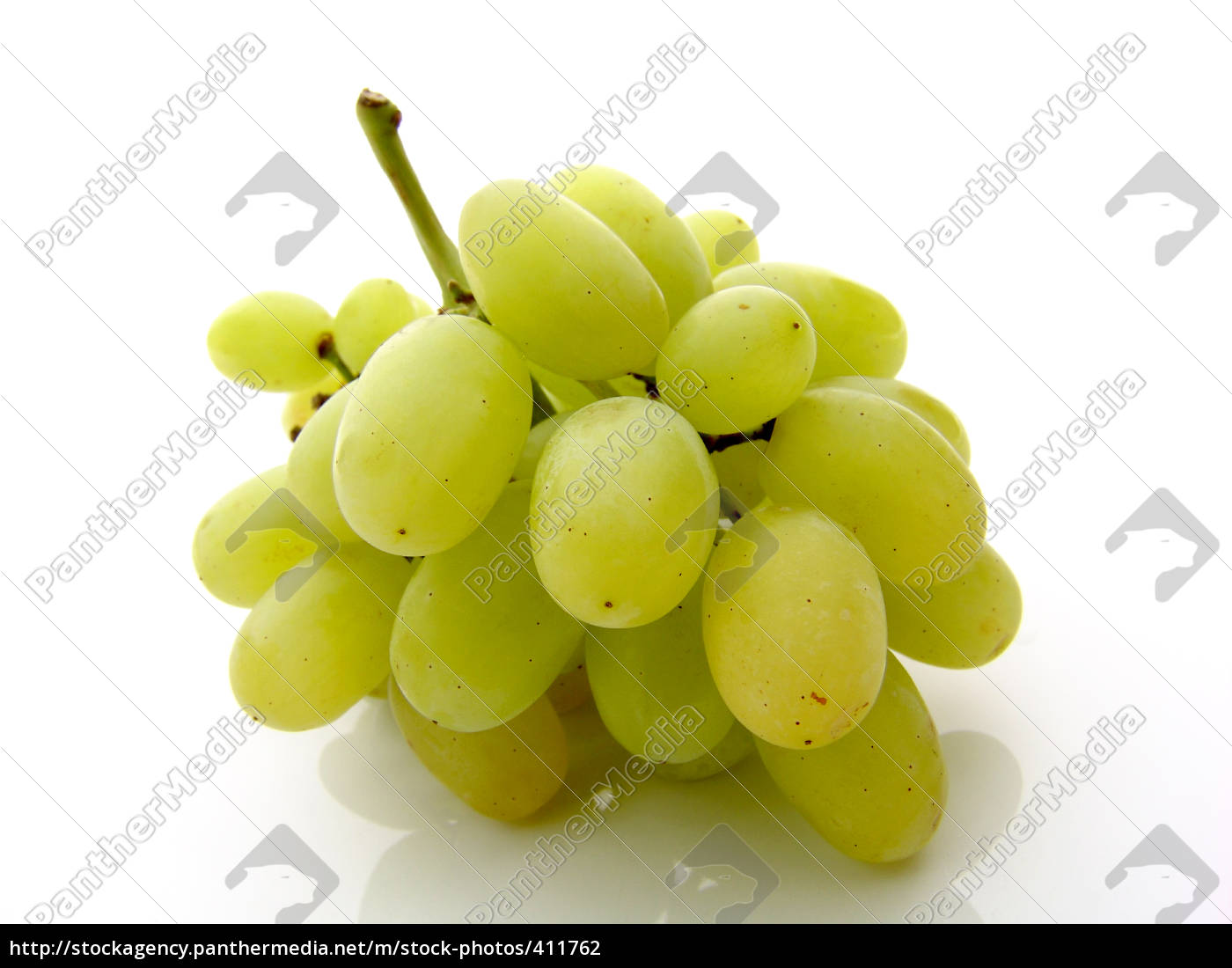 green, grapes - 411762
