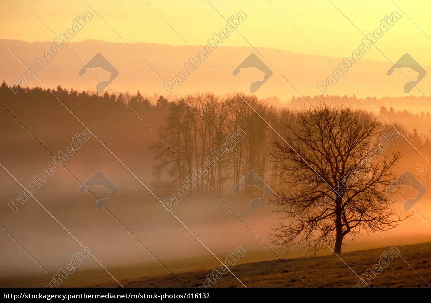 one, november, morning - 416132