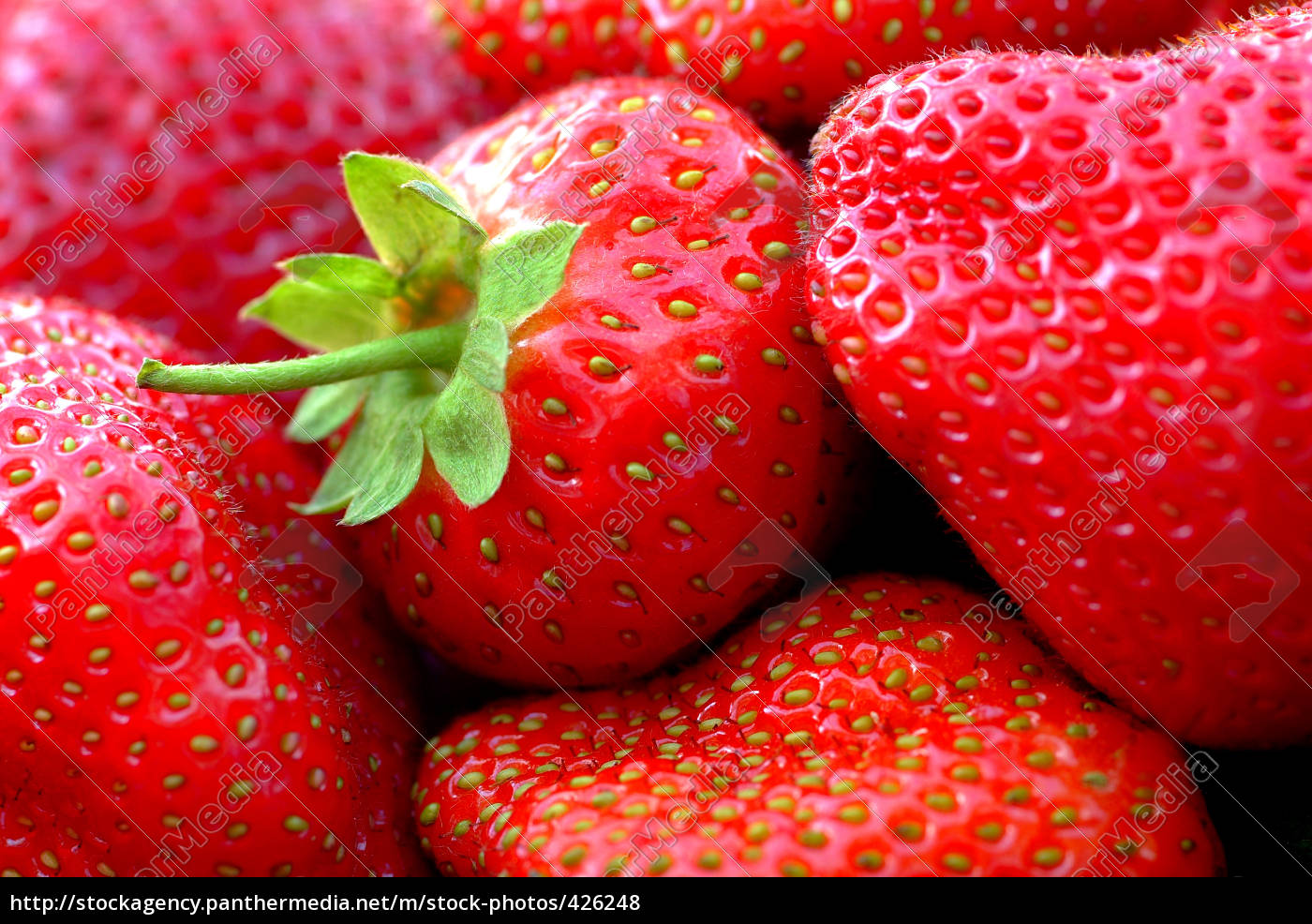 strawberries - 426248