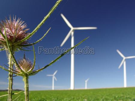 wind, park - 429070