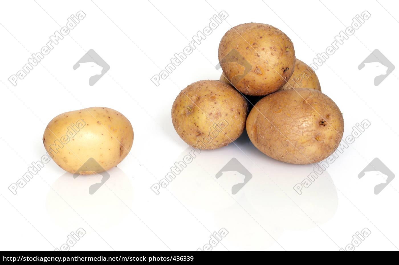 potatoes, 1 - 436339