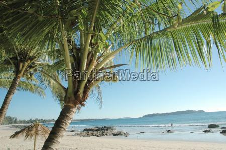 beach - 438355