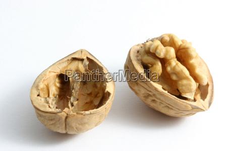 walnut - 440354