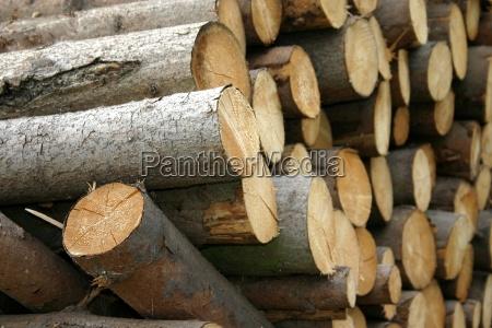 wood - 442274