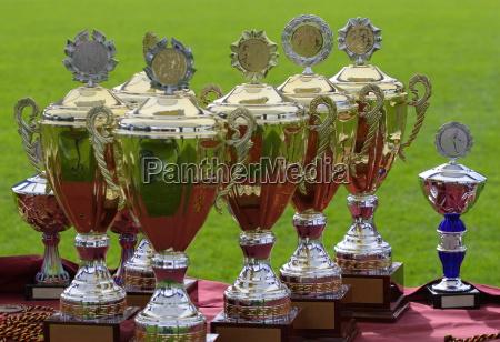 trophies - 447182