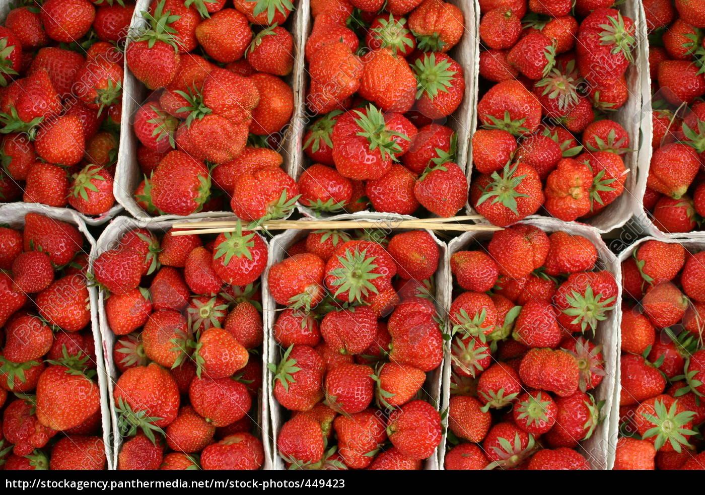 strawberry, baskets - 449423