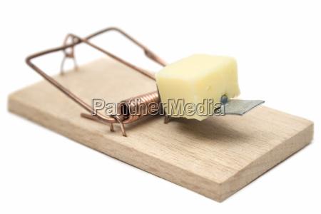 mousetrap - 450283