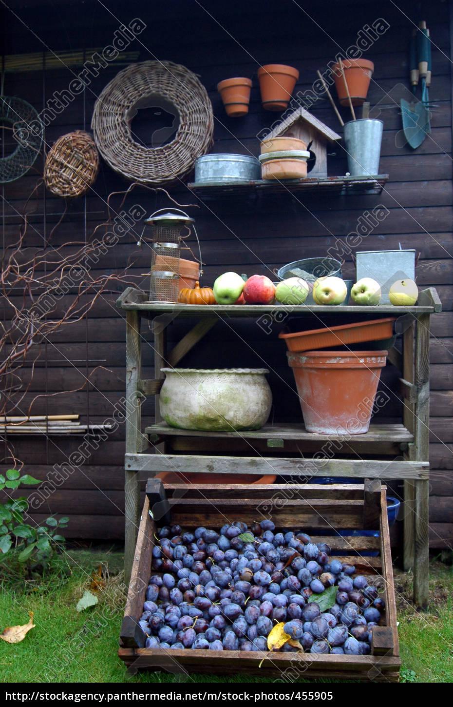 garden, still, life - 455905