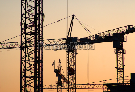 cranes, and, sunrise - 460170