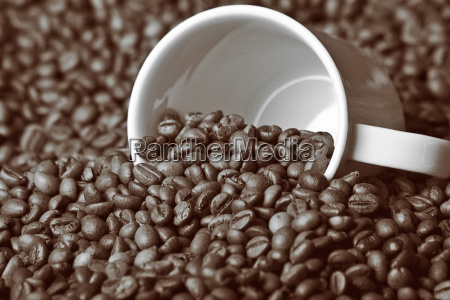 coffee - 463458