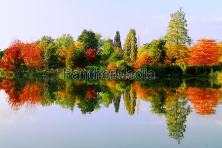 autumn, in, arboretum - 464328