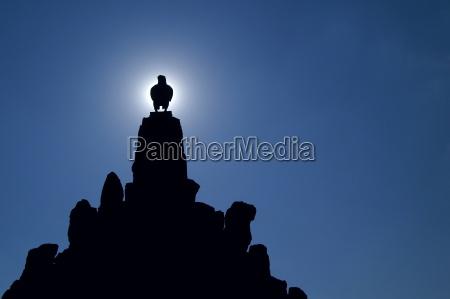 sun, god - 466217