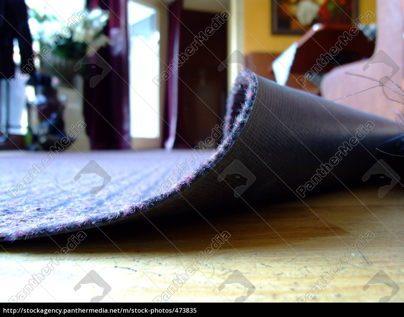 sweep, under, the, carpet - 473835
