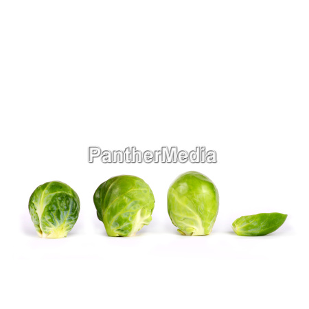 brussels, sprouts - 479230